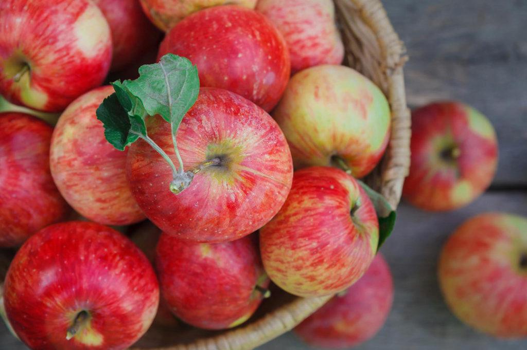 frukty protiv zhira yabloki