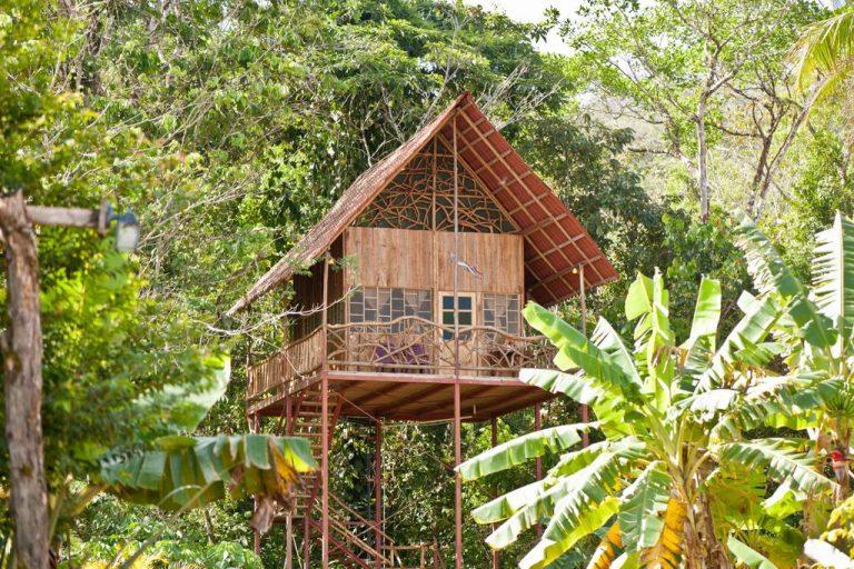rainforest tree house 768x512 1