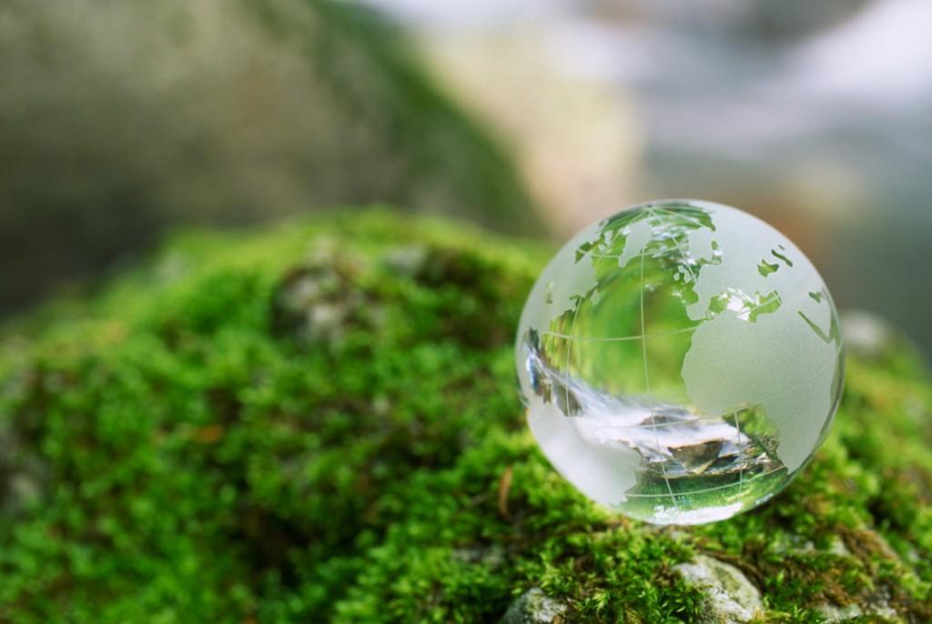 ТОП 8 фильмов об окружающей среде