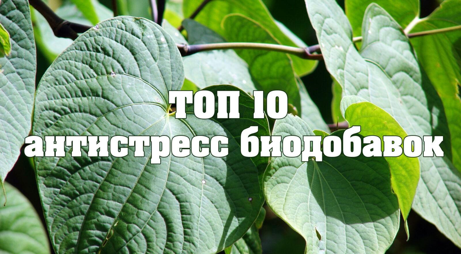 ТОП 10 антистресс биодобавок