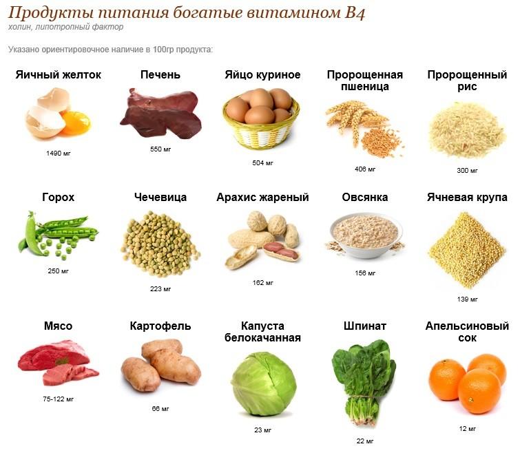 продукты богаты витамином В4 (холин)