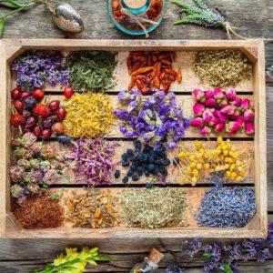 5 трав от болей в суставах