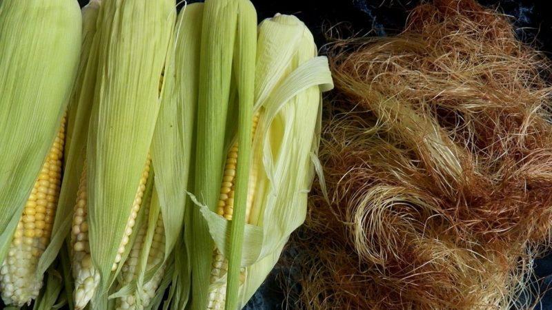 7 причин обратить внимание на  кукурузный шелк (кукурузные рыльца)