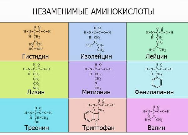 Незаменимые аминокислоты - формула