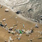 Затерянный океанический пластик может создавать ловушки на побережье