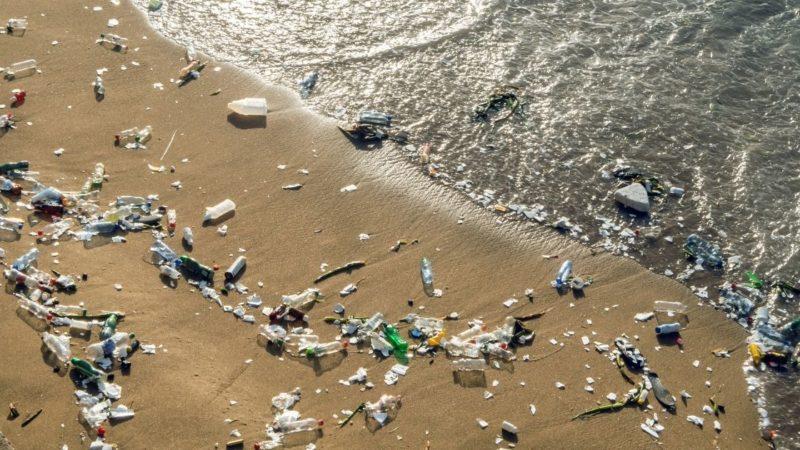 «Затерянный» океанический пластик может создавать ловушки на побережье