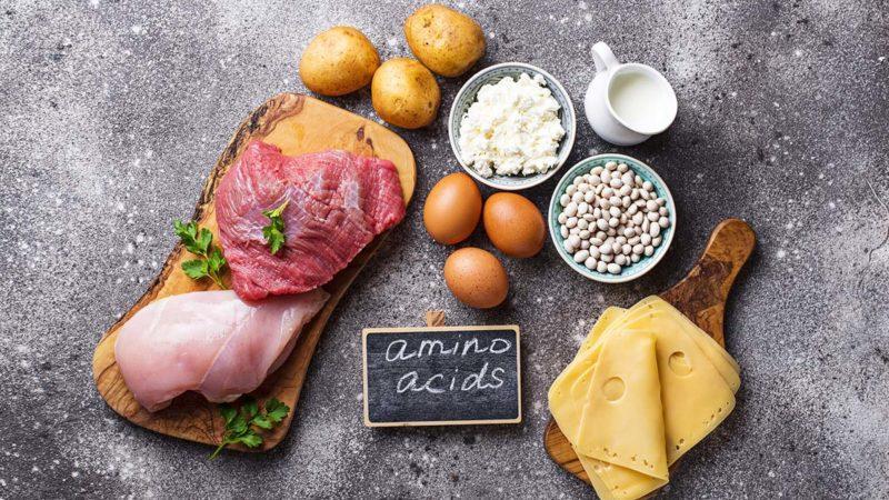 Что такое незаменимые аминокислоты и их роль в организме, источники и побочные эффекты