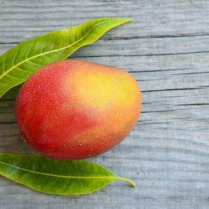 4 доказательные причины полюбить африканское манго