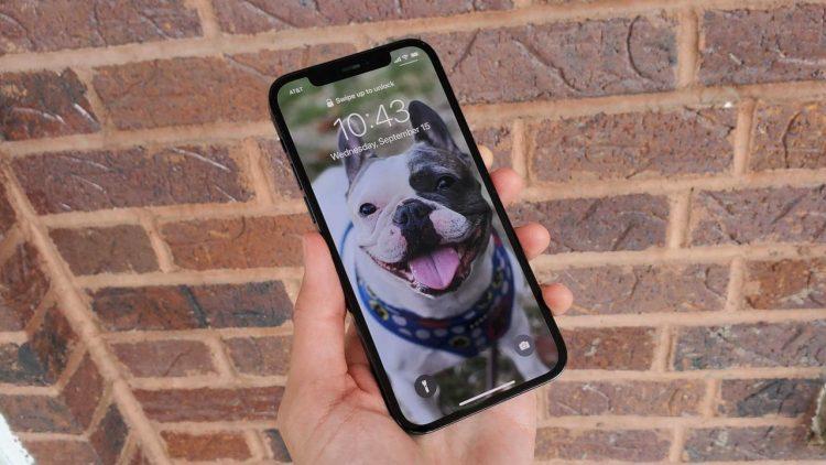 210915112400 iphone 12 vs 13 2